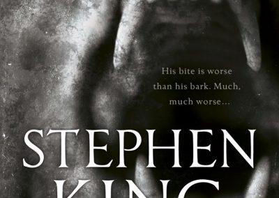 91e8c612229b069771bffed194a1c9d0--steven-king-stephen-king-books